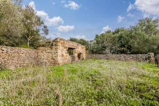 Un muro de piedra rodea la propiedad