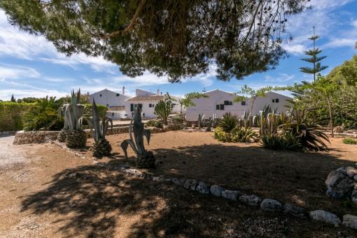 Área de jardín mediterránea