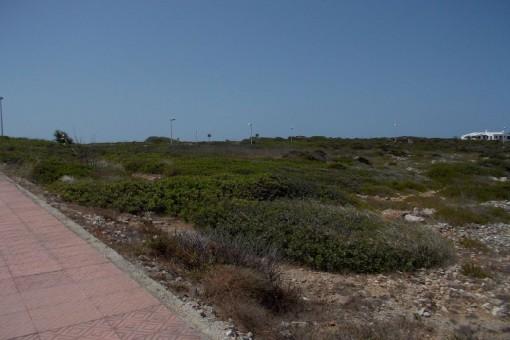 Terreno edificable cerca del mar