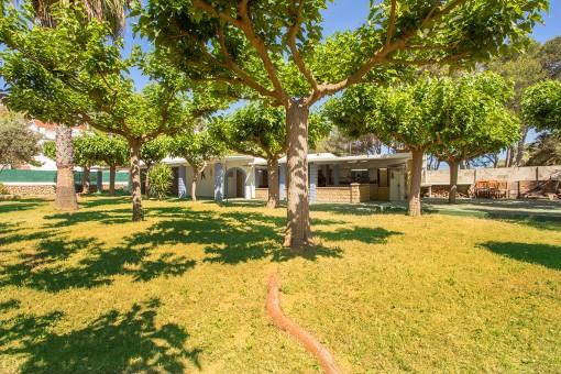 Casa a solo 50 m de la playa de Santandria con 215 m2 construidos en una parcela de 1.844 m2